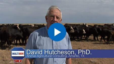 Dr. Dave Hutcheson